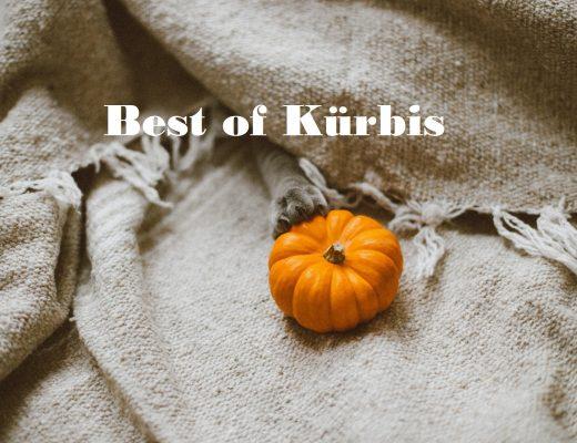 Best of Kürbis | Unsere persönliche TOP 5