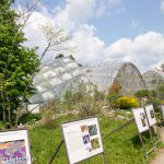 Nudelminze, Lendwirbel & Weltkulturerbe - Ein langes Wochenende in Graz