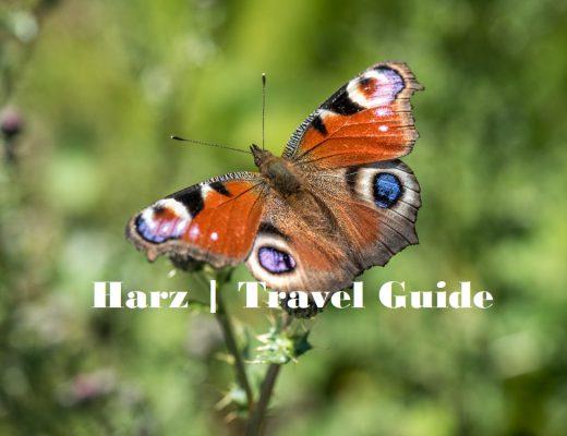 HARZ Travel Guide | Von Burgen, Schächten & kleinen und großen Brocken