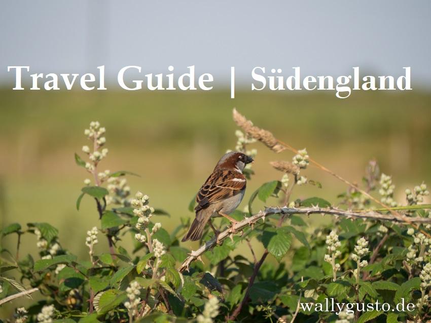 Travel Guide | Unterwegs in Südengland - das sind unsere Highlights!