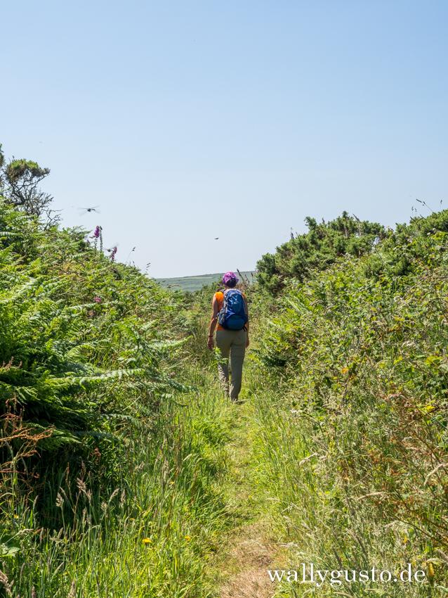 Wandern auf der Penwith-Halbinsel | Travel Guide Penwith-Halbinsel auf www.wallygusto.de