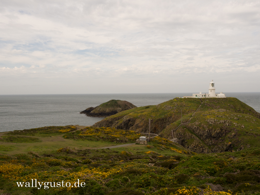 Wanderung am Strumble Head - Travel Guide | Pembrokeshire Coast Wanderung Strumble Head - Travel Guide | Pembrokeshire Coast Nationalpark