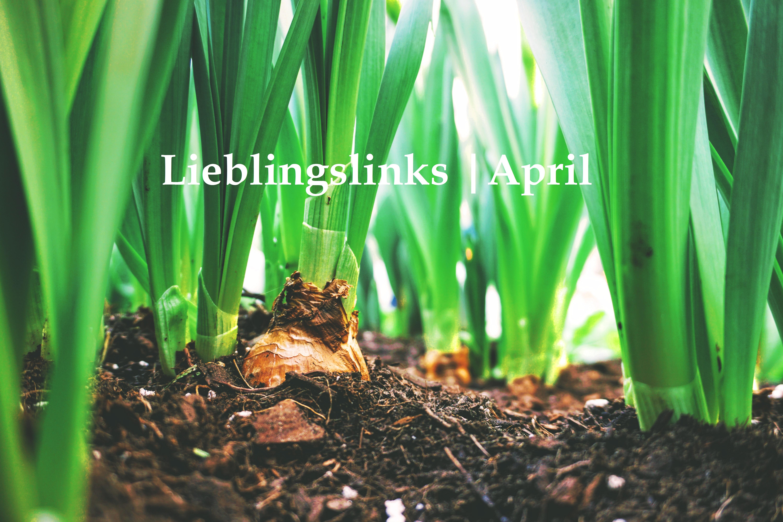 Lieblingslinks | April mit türkischen Vorspeise & neuen Erkenntnissen zum Bierbauch! ;-)